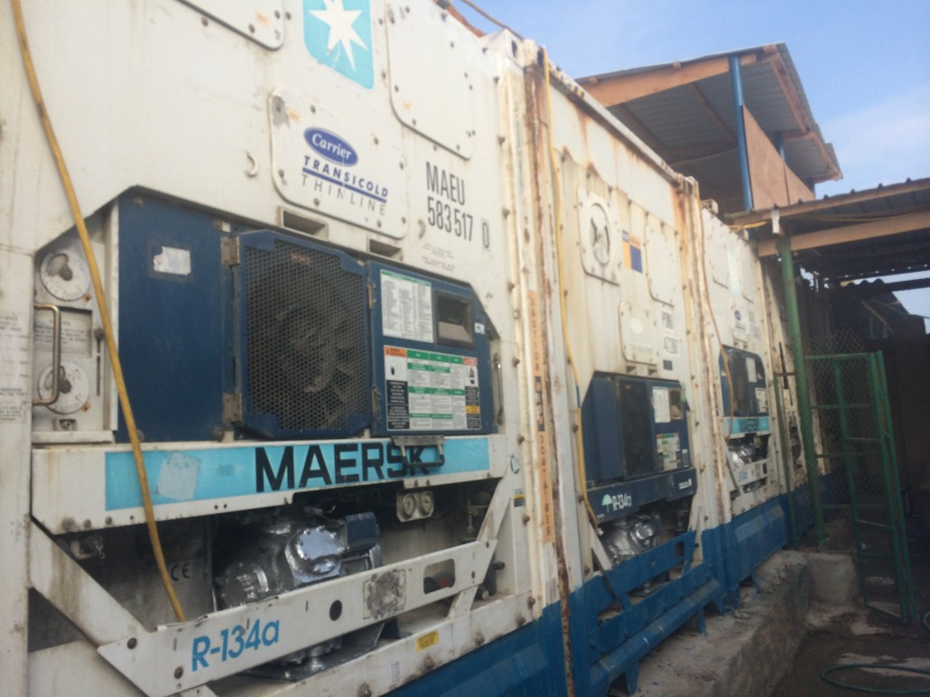 5 reefer containers from Maersk Line are our station's backbone